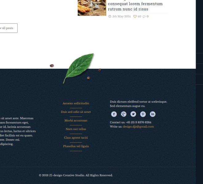 Izrada web-sajtova Niš